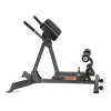 Inspire 45/90 Hyperextension Bench
